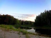 Skog sjö bland träden på solnedgången Royaltyfria Bilder