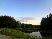 Skog sjö bland träden på solnedgången Arkivbilder