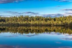 Skog sjö, himmel Arkivbilder