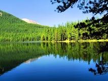 Skog sjö i bergen. Arkivfoton