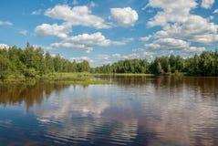 Skog sjö med reflexion av träd och himmel med moln Royaltyfria Bilder
