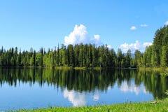 Skog sjö med reflexion av träd och moln i vatten royaltyfria bilder