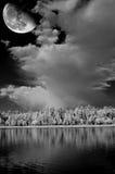 Skog sjö och måne Arkivbild