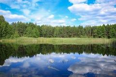 Skog sjö och molnig blå himmel Arkivbilder