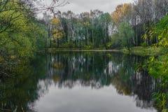 Skog sjö på en molnig höstdag royaltyfri foto
