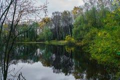 Skog sjö på en molnig höstdag arkivbilder