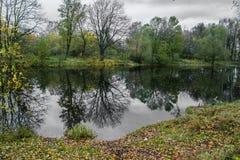 Skog sjö på en molnig höstdag royaltyfri bild