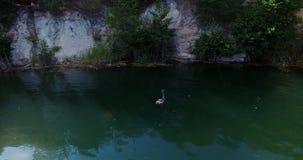 Skog sjö på flyg- surrflyg för gryning lager videofilmer