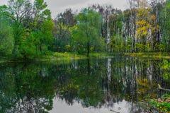 Skog sjö som reflekterar hösten på en molnig dag royaltyfri foto