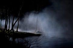 skog spökade mystiska trees arkivbild