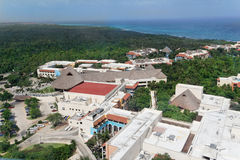 skog tropiska yucatan Royaltyfri Fotografi