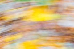 Skogabstraktion Långt exponeringsfoto av den höstliga skogen Royaltyfri Foto