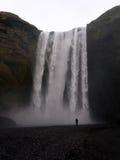 skogafoss瀑布 库存图片