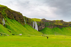 Skogafoss and the field of various flowers Stock Photos