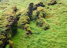Skogafoss Hillside Immagine Stock Libera da Diritti
