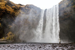 Skogafoss scale. Beautiful female tourist dwarfed in front of the mighty Skogafoss waterfall in Iceland Royalty Free Stock Photos