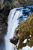 Skogafoss vattenfall i Island med seagulls på klippan i vinter arkivbilder