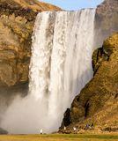 Skogafoss waterfall in Iceland is a major attraction Royalty Free Stock Photo