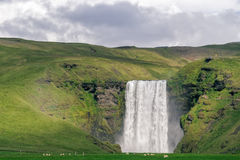 Skogafoss waterfall, Iceland. Royalty Free Stock Photo