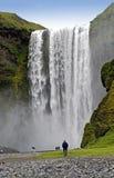skogafossvattenfall Royaltyfri Fotografi