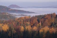 Skogar av bohemmet Schweiz, Tjeckien Royaltyfri Foto