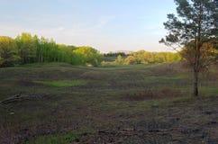 Skogar och fält av Battle Creek Arkivfoto