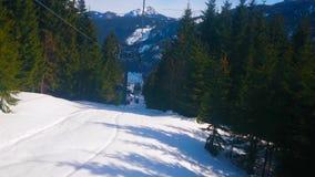 Skogar på lutning av den Zwieselalm monteringen, Gosau, Österrike stock video