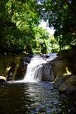 Skogar vattenfall, natur Arkivbild