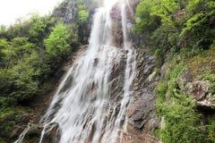 Skogar, vattenfall och strömmar som ska kopplas av fotografering för bildbyråer
