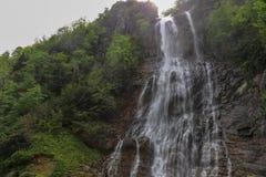 Skogar, vattenfall och strömmar som ska kopplas av royaltyfria foton