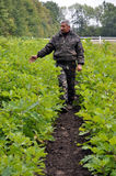Skogarbetare i nursery_2 Arkivfoto