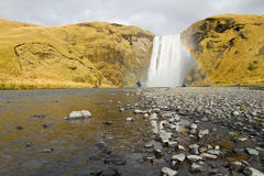 Skogarfoss Falls Arkivfoton