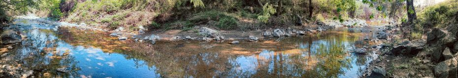 Skogbäck i sen sommar med klart vatten Arkivbild