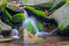Skogbäckvattenfallet mellan mossigt vaggar Royaltyfri Bild