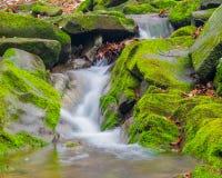 Skogbäckvattenfallet mellan mossigt vaggar Royaltyfria Bilder