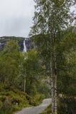 Skogbana mellan björkträd med en bergvattenfall Royaltyfri Foto