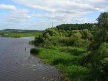 Skogbanken av floden som går till horisonten Royaltyfri Bild