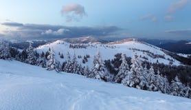 Skogberg på vintern, Slovakien Arkivbild