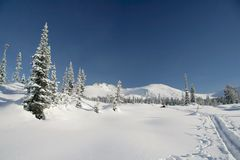 skogberg skidar spårvinter Arkivbild
