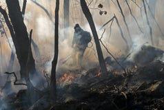 skogdämpning för 13 brand Arkivfoto