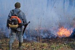 skogdämpning för 46 brand Arkivfoton