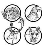 Skogdjurcirklar 2 stock illustrationer