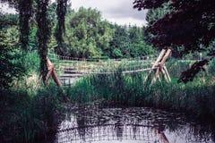 Skogen överbryggar Fotografering för Bildbyråer