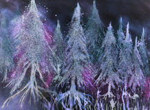 Skogen av att glöda sörjer träd i fantasisnö mot en natthimmel Arkivfoton