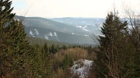 Skogen för vintern för skogbergkullen av en Picea för för bokträdFagussylvatica och gran abies skogen, snö som täckas med ett sto lager videofilmer