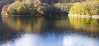 Skogen i höst reflekteras i den Endara behållaren royaltyfria bilder