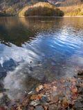 Skogen i höst reflekteras i den Endara behållaren fotografering för bildbyråer
