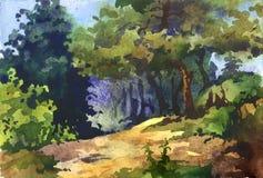 Skogen kantar Arkivfoton