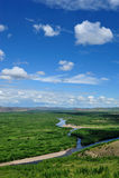 skogen landscapes floden Royaltyfri Fotografi