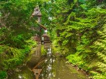 skogen mal gammalt vatten Royaltyfri Fotografi